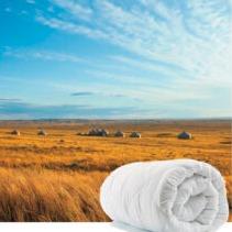 Merino Wool 澳洲正宗羊毛被热卖 多款多个size可选